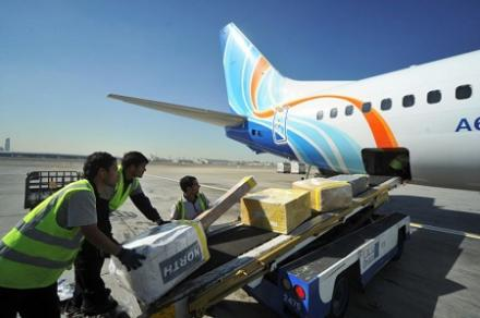 The organization of sales of air transport and attraction of cargo customers